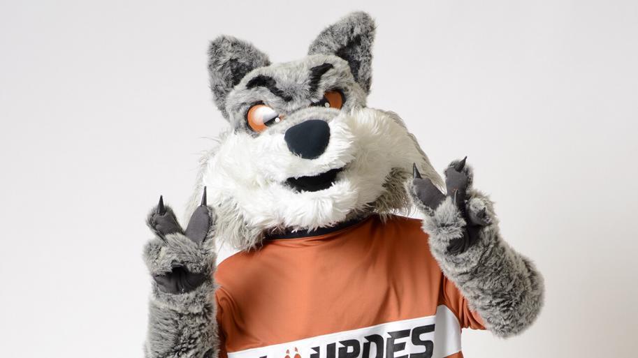 Man dressed as wolf