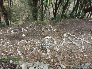 """rocks lined up to spell """"heart PAX"""""""