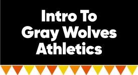 Box with words: Intro to Gray Wolves Athletics