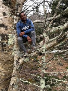 Andre in a tree