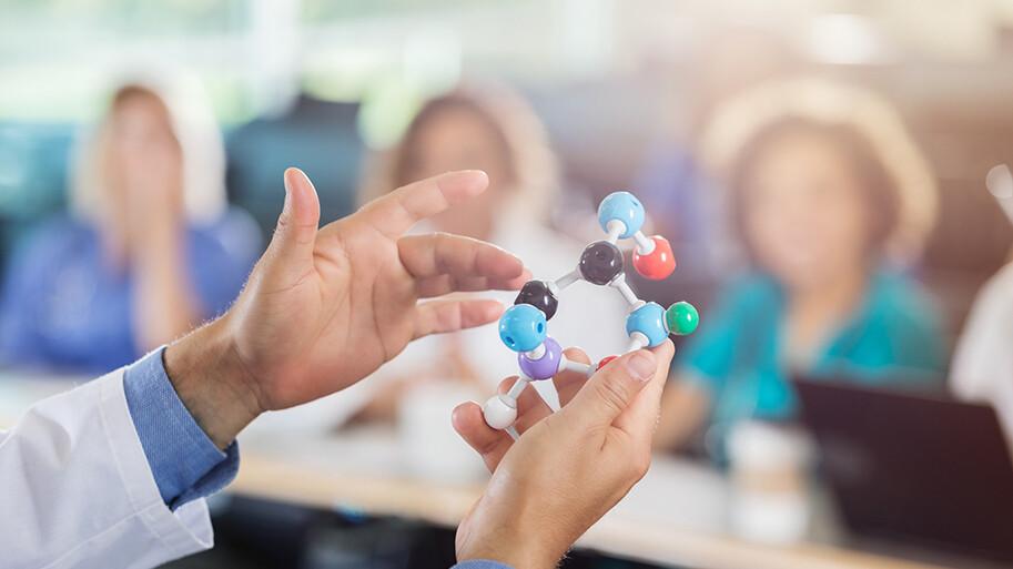 Medical School Professor Uses Molecular Model In Class