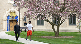 Students walking a pathway on the Lourdes campus