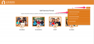Image of how to login to portal
